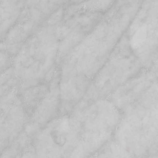 Tile Samples msi-tiles-flooring-carrara-white-12x24-polished-TCARRWHT1224