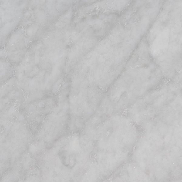 Tile Samples msi-tiles-flooring-carrara-white-12x24-honed-TCARRWHT1224H
