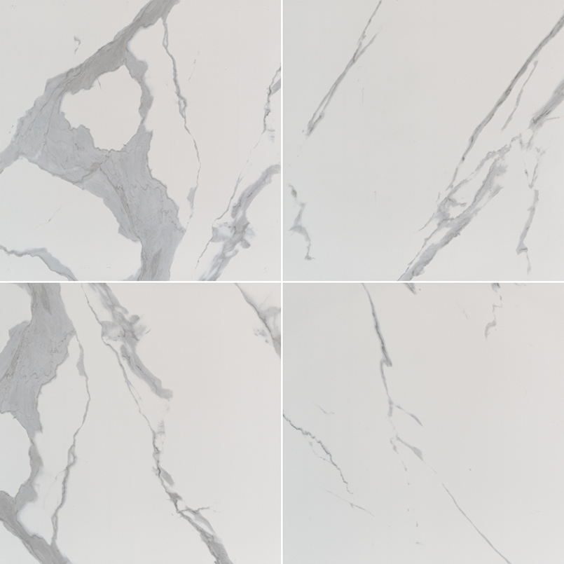 PORCELAIN FLOOR TILES, Tiles and Flooring msi-tiles-flooring-eden-statuary-24x24-matte-NEDESTA2424